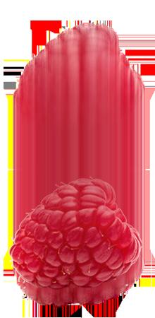 http://thatbobatho.com/wp-content/uploads/2021/04/raspberry-1.png